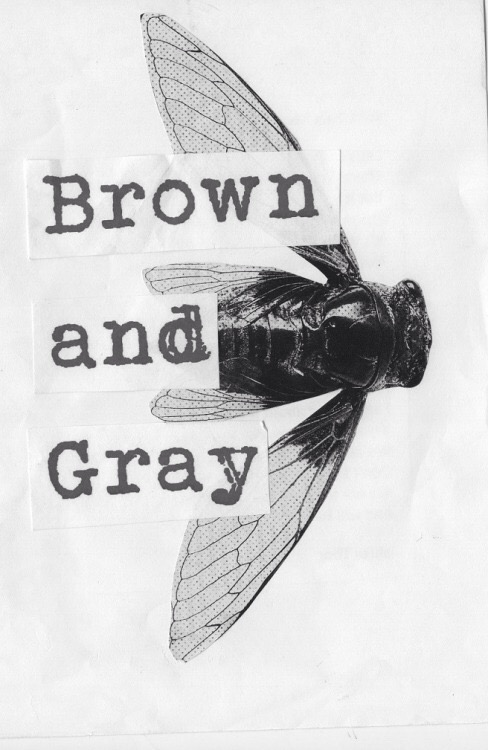 Cover of Brown and Gray